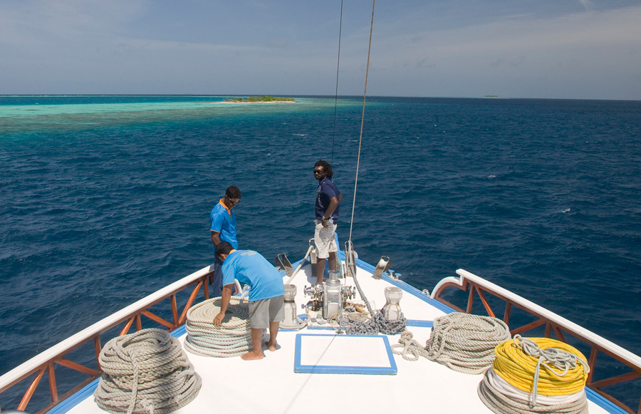 Maldives diving trips Nautilus 1 Nautilus 2
